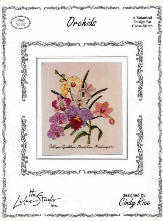 Gallery.ru / Фото #42 - Орхидеи - mornela