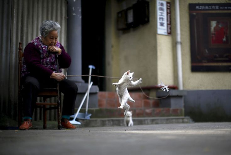 Found on theweek.com  Best of Photojournalism Saturday, April 18, 2015 (REUTERS/Carlos Barria). A woman plays with a kitten in downtown Shanghai.