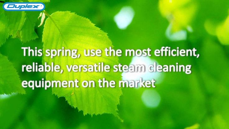 "Spring is now here! Hear what businesses have to say about their ""spring clean-up""... Purchase our latest steam cleaning machine and receive a FREE #spring item."