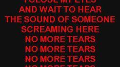 no more tears lyrics ozzy osbourne - YouTube