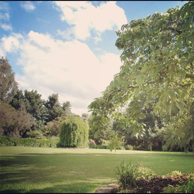 Chateau Yering   Heritage Gardens