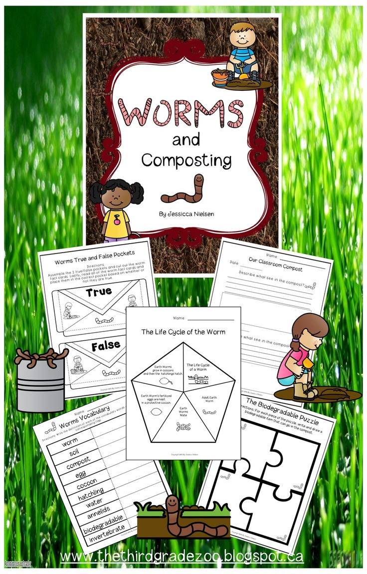 How To Eat Fried Worms $this Unit Is Packed Full Of Activities All About  Worms Andposting This Unit