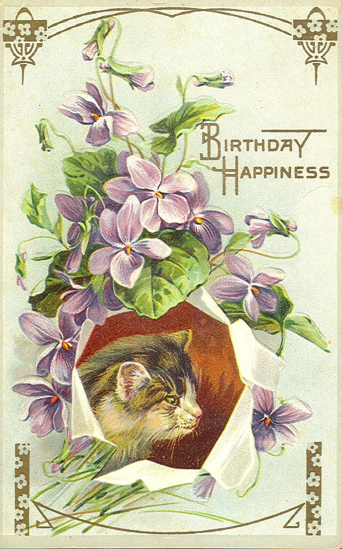 1 Of 2 Embossed Kittens Birthday Happiness Kitten Looking From A Paper Bag