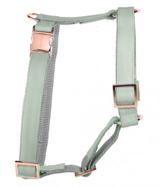 copper mint dog harness prunkhund