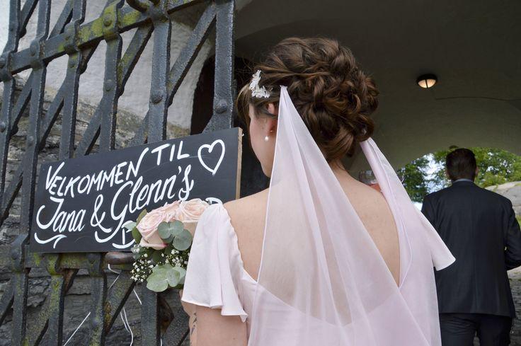 Blush pink veil, silk chiffon veil, pink wedding dress