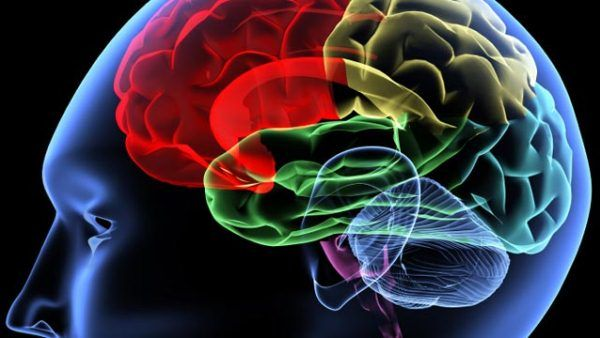 Bostoni orvosok két nagy hosszú távú tanulmány alapján több mint 115.000 résztvevővel elemezték, hogy a stroke mennyire hatékonyan előzhető meg öt faktor segítségével: #nemdohányzás, normál testsúly, elegendő mozgás, legfeljebb mérsékelt alkoholfogyasztás és egészséges táplálkozás