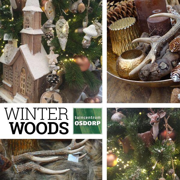 Een warme en natuurlijke kerst met de Winter Woods kersttrend van 2016 bij tuincentrum Osdorp