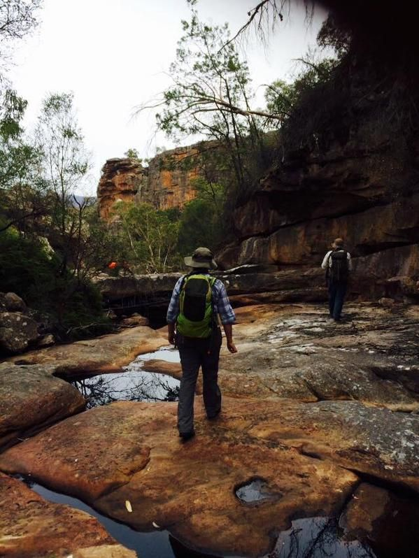 Lizzie & Teddy search for #quoll scat in the Grampians