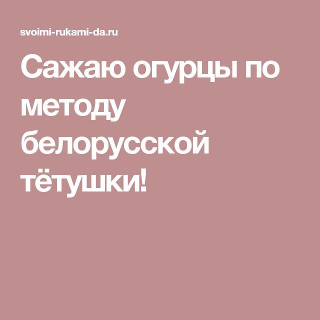 Сажаю огурцы по методу белорусской тётушки!