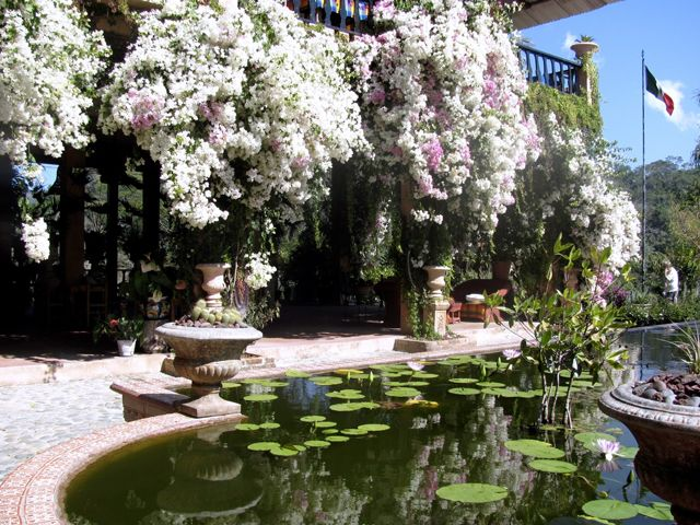 18 best pv summer 2015 images on pinterest mexico - Puerto vallarta botanical gardens ...
