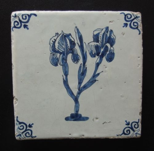 17th Century DUTCH DELFT TILE decorated with flowering iris: c1650
