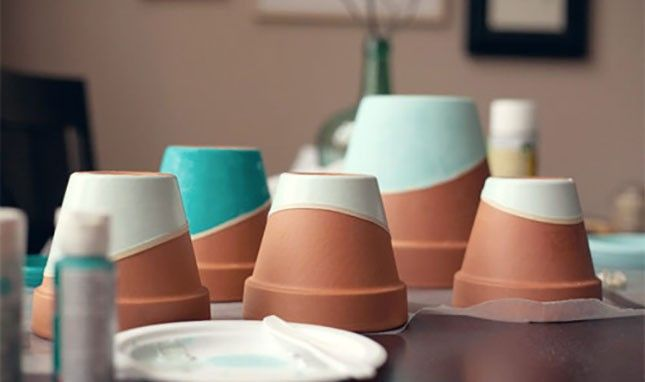 19 DIY Plant Pots That Are Legal in All 50 States
