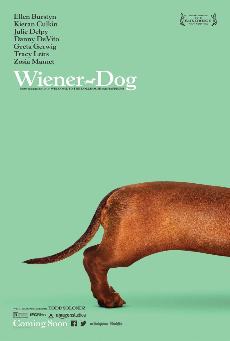 Return to the main poster page for Wiener-Dog