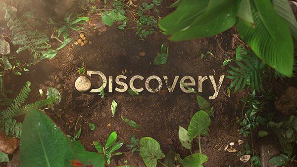 Discovery Channel Latam Rebrand by Plenty, via Behance