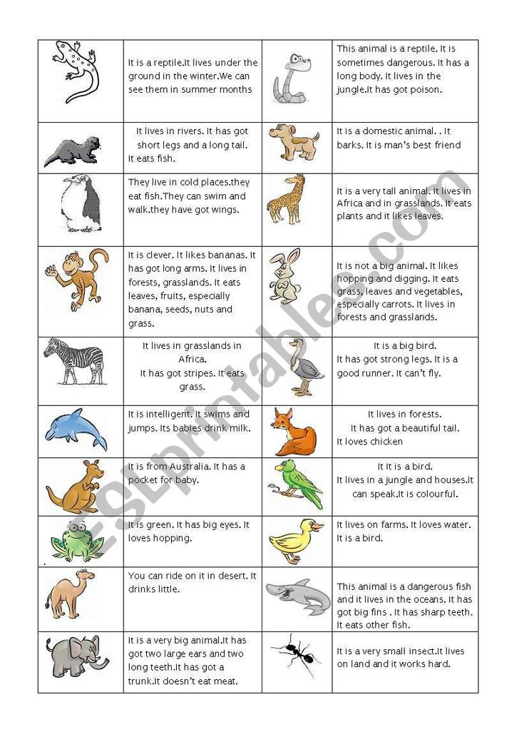 while teaching animals this worksheet will be useful zoo animals educacion. Black Bedroom Furniture Sets. Home Design Ideas