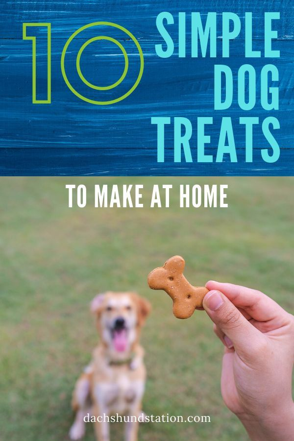10 Easy Homemade Dog Treats For Little Dogs Homemade Dog Treats