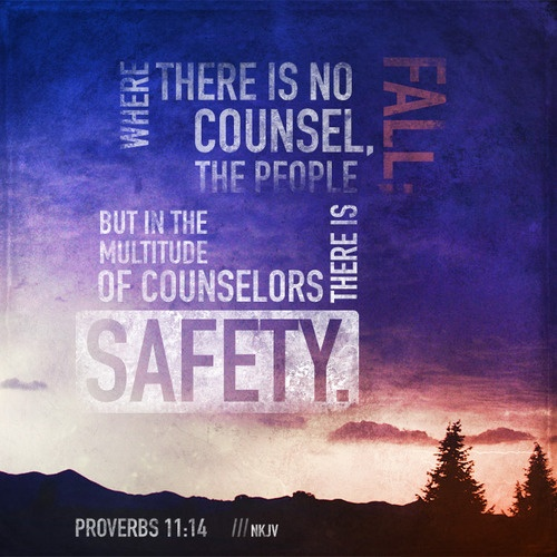 Proverbs 11:14 ~ Where there is no counsel, the people fall but in the multitude of counselors there is safety...