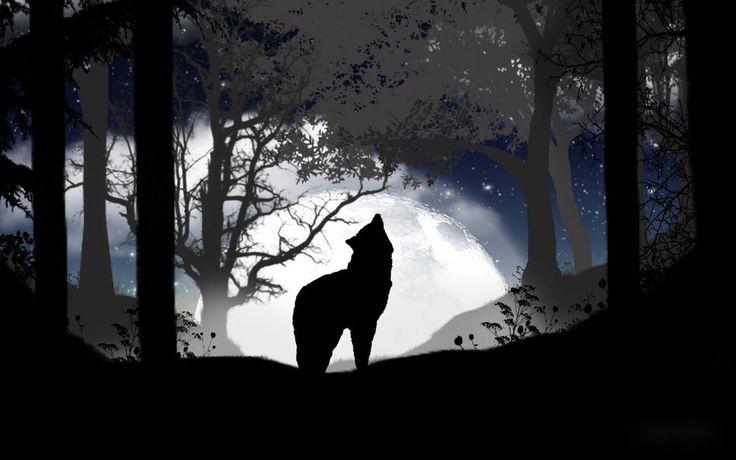 Nouvel article depuis le site littéraire Plume de Poète - L'Alpha-Oméga (Loup solitaire) - par Frédéric Matteo
