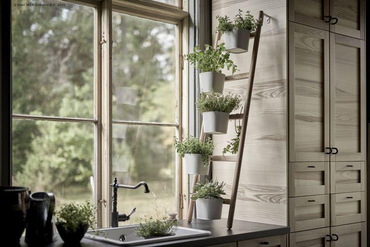 Standul SATSUMAS îți aduce un colț de verdeață în orice loc din casă.