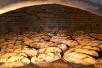 Fiche métier Boulanger bio au feu de bois - - Apprendre - Formation pain, levain naturel, farine, biologique, boulangerie, CAP, formation, artisanat, fournée, scop, amap, pizza, fougasse, croissants, viennoiserie, fournil, qualité, paysan boulanger, meule, grain, moud