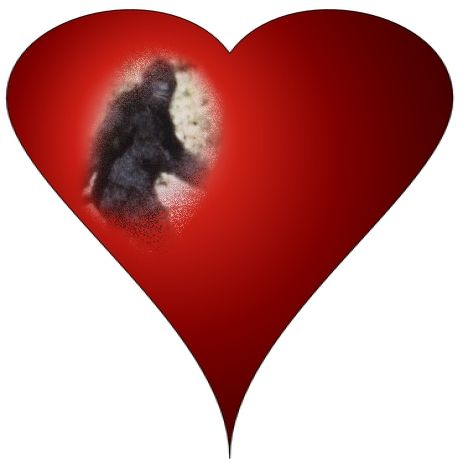 Bigfoot research with love.