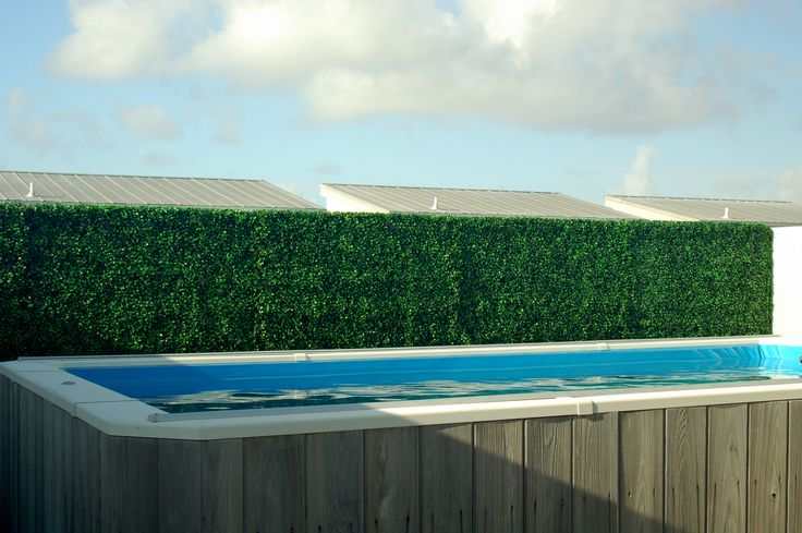 Artificial Privacy Hedge Blocking The Neighbors View Of