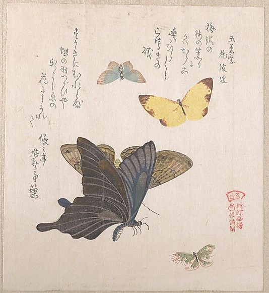 Various Moths and Butterflies  Kubo Shunman  (Japanese, 1757–1820)  Date: 19th century Culture: Japan Medium: Part of an album of woodblock prints (surimono); ink and color on paper