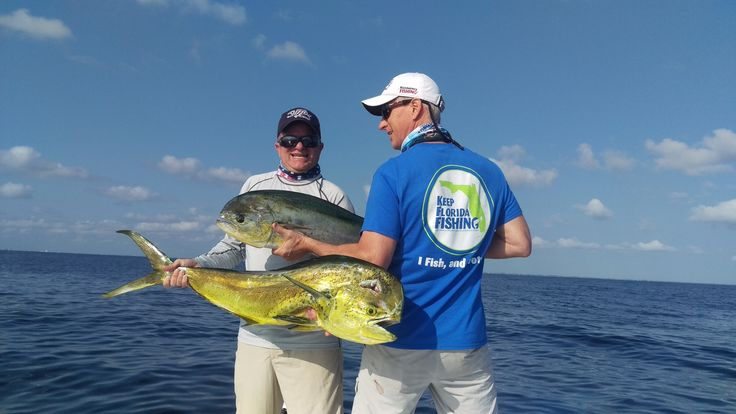 10 best florida images on pinterest saltwater fishing for Florida 3 day fishing license