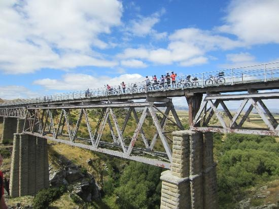 Otago Central Rail Trail courtesy of TripAdvisor
