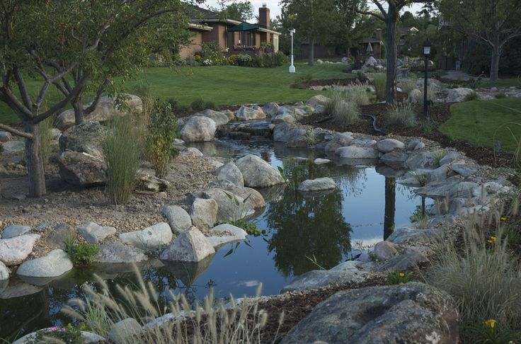 208 best images about ponds water gardens on pinterest for Koi pool water gardens thornton