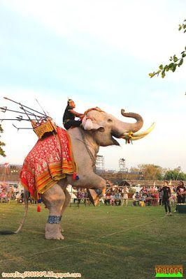 Travel around the world.: Phra Nakhon Si Ayutthaya World Heritage Fair 2015