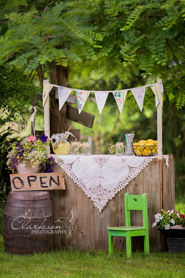 This is my new lemonade Stand mini session from Clarkson Photography. I made the stand out of scraps that would have gone to the dump. Yay for up-cycling! www.ClarksonPhotography.com Facebook.com/ClarksonPhotography