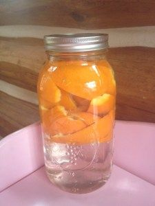Natural All-Purpose Cleaner-orange peels and vinegar