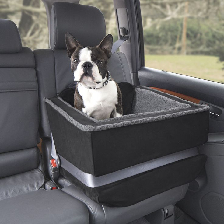 18 best images about dog car seats on pinterest gifts for dogs cars and pet travel carrier. Black Bedroom Furniture Sets. Home Design Ideas