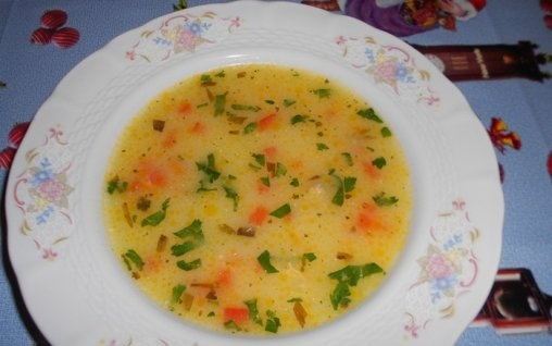 Transylvanian soup (ciorba ardeleneasca)