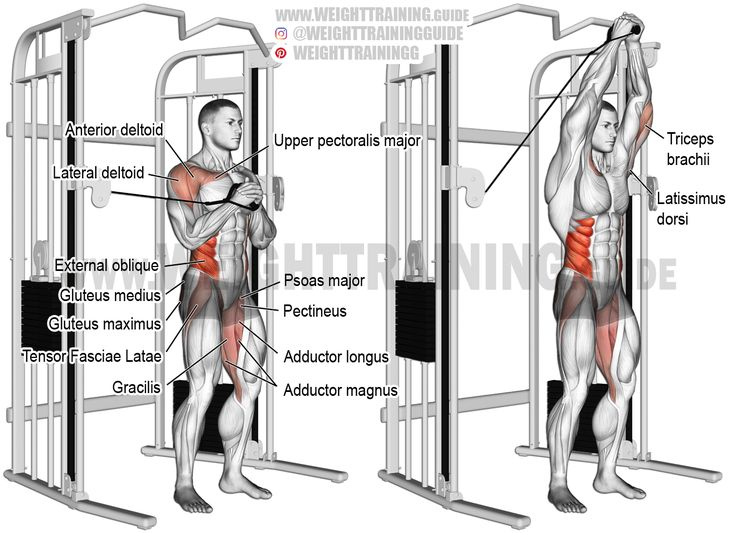 Cable vertical Pallof press exercise instructions and