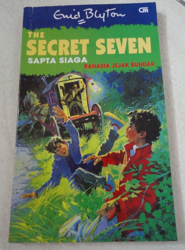 First Book In The Series Secret Seven