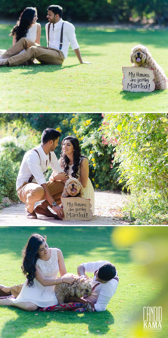 Include your pet in your Save the Date announcement! Couple Photography, Pet, Dog, Puppy with Couple in their Save the Date Photography, Dubai Wedding Photographer   Candid Kama Photography