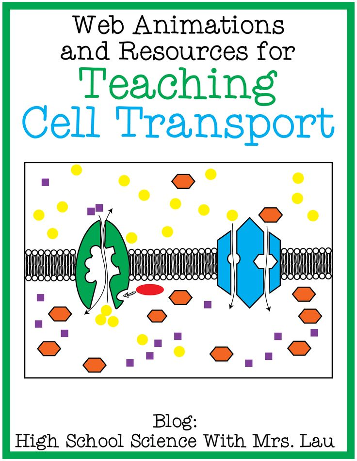 Teaching Cell Transport: Osmosis, Diffusion, Facilitated Diffusion, Active Transport, Sodium Potassium Pump, Endocytosis, and Exocytosis. Links to web animations and other resources for teachers! Blog: High School Science With Mrs. Lau