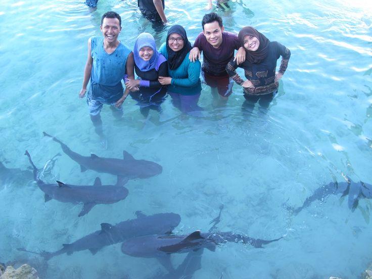 August 2013 || Shark Pool in Karimun Jawa, Jepara
