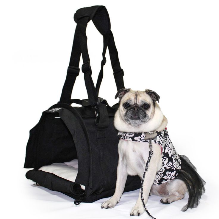 Sturdibag Large Pet Carriers Dog Carrier Pets