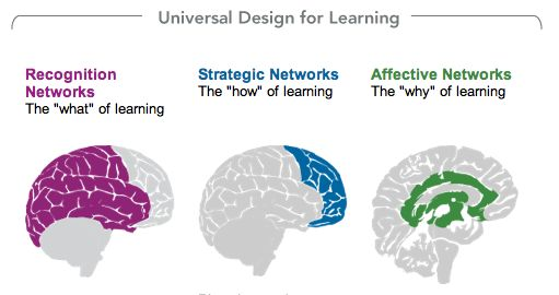 Brain Research Classroom Design : Images about edp universal design for learning