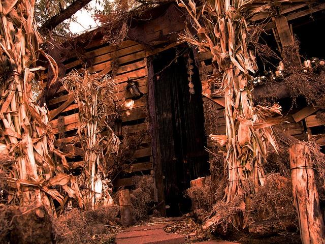 dark rose manor by filialuna via flickr - Halloween Houses Decorated