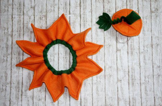 Dog Pumpkin Costume Halloween
