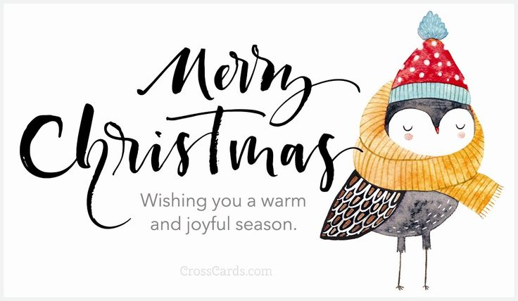 Send this FREE Wishing you a warm and joyful season. eCard to a friend or family member!  Send free Christmas ecards to your friends and family quickly and easily on CrossCards.com. Share an animated Christmas eCard or a cute and funny ecard with your family and friends, it's easy!  Find that perfect Christmas card, add a personalized message, then press send!  That's all it takes to brighten the day of a friend with a FREE eCard!  CrossCards.com – Free Christian inspired online greeting…