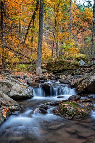 """For this image of Kaaterskill Creek, I knew the small cascade was my main subject.  There were some rocks to create interest in the foreground, and the water creates a nice leading line back to the cascade in the middle ground, and then to the foliage in the background.  EOS 5D Mark III with EF 16-35mm f/2.8L II. I was zoomed into 35mm on this one. Exposure was 1.6"""" at f/20, ISO 100."""