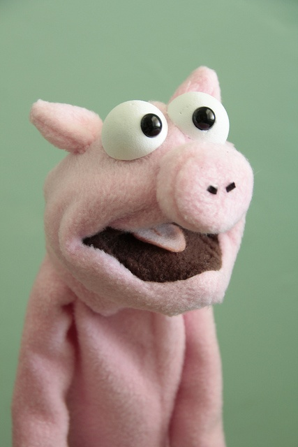Nice pig hand puppet by Stacey Gordon.