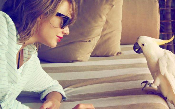 Taylor Swift, Tom Hiddleston Split: Couple Ends Romance Due to Ego?