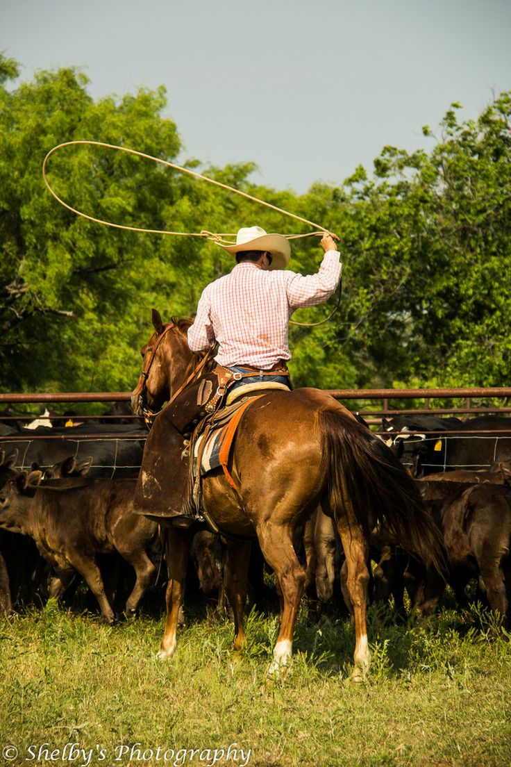"""❦ """"Long Live Cowboys"""" - Shelby Lyle. Working cattle. Saunders ranch Weatherford, Texas"""
