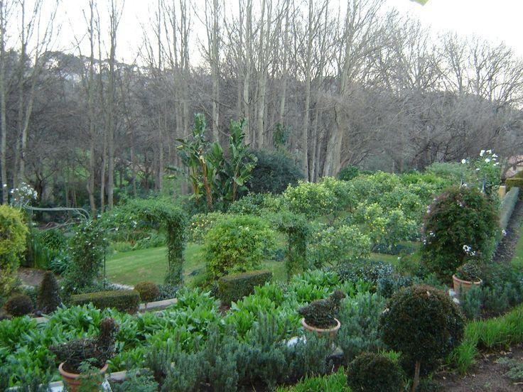 Herb Garden & Citrus Trees
